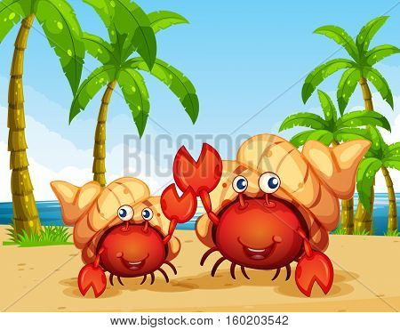 Two hermit crabs on the beach illustration