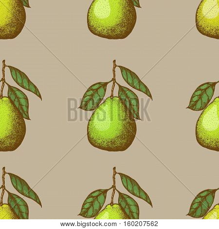 Vector seamless pattern with pomelo. Vector illustration. Design element for for cafe or restaurant or web and print design