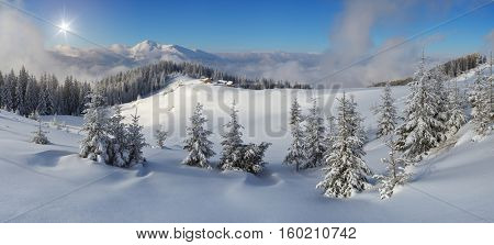 Panoramic views of the mountains in winter. Sunny day with blue sky. Good weather after a snowfall. Wooden houses on the hill. Young fir trees in the snow.