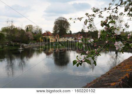 Urban landscape with a lake / Dinkelsbühl (Germany)