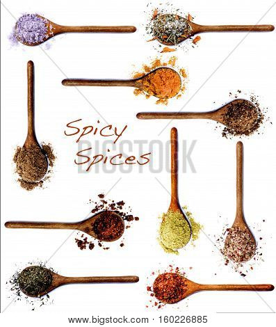 Collection of Various Spices with Inscription in Wooden Spoons: Dried Paprika Curry Powder Salt with Cayenne Pepper Zira Coriander Thyme Salt with Chili Kosher Salt Cumin Powder and Salt with Petals