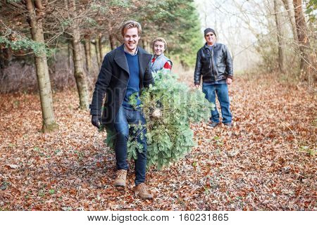 Family getting a Christmas tree on a farm,
