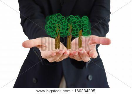 growth green with white background ,trees on hands,focus on hands and tress and blurred background