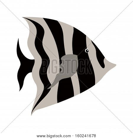 colorful silhouette with sea fish to striped vector illustration