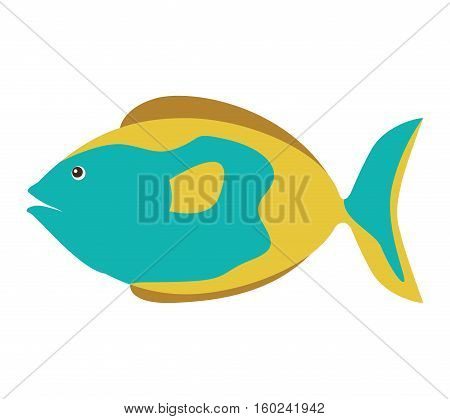 colorful silhouette with sea fish blue and fins brown vector illustration