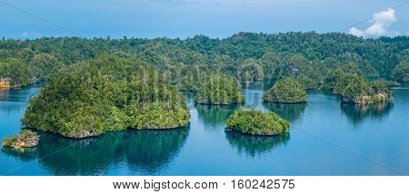 Many Rocks covered by Palmtrees in Passage between Gam and Waigeo, View Point near Warikaf Homestay. West Papuan, Raja Ampat, Indonesia. Banner