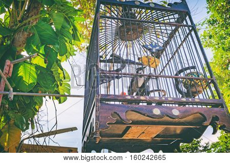 Red-whiskered bulbul in a bamboo cage tradition bird cage in southern of Thailand. Selective focus on the bird