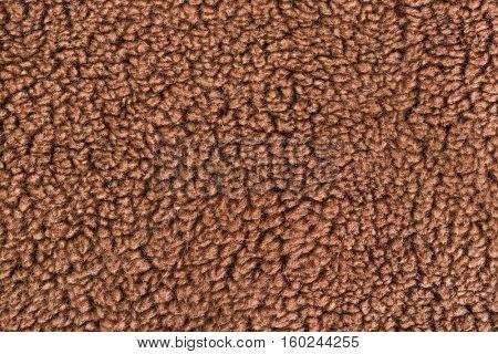Woolly sheep fleece texture - furry background