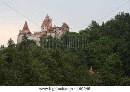 dracula's castle poster