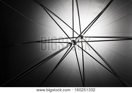 Photo of a shoot through umbrella diffusing light