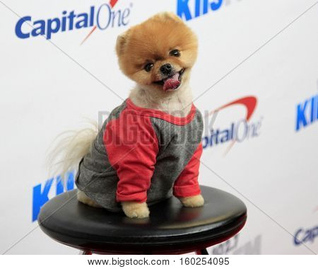 LOS ANGELES - DEC 2:  Jiff Pom at the 02.7 KIIS FM's Jingle Ball 2016 at Staples Center on December 2, 2016 in Los Angeles, CA