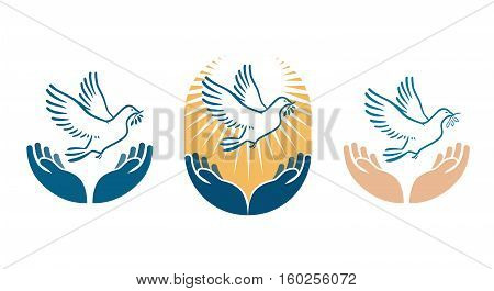 Dove bird carrying olive branch in beak as a peace symbol. Vector logo or icon isolated on white background