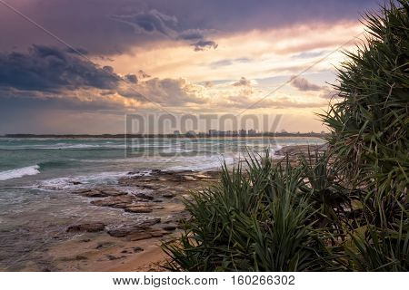 The pandanus trees are a very typical sight on the beaches of the Sunshine coast in Queensland Australia. The sun sets beautifully over the waves of the Pacific Ocean.