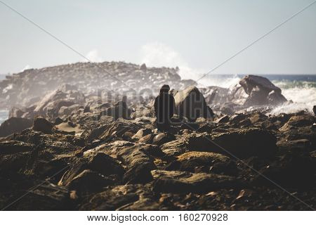 Person standing near crashing waves on rocky shore in Newport, Oregon. Pacific Northwest USA.
