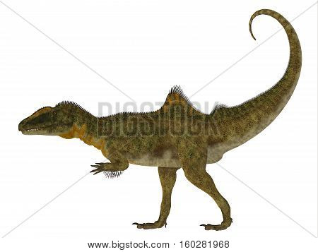 Concavenator Dinosaur Side Profile 3D Illustration - Concavenator was a carnivorous theropod dinosaur that lived in Spain in the Cretaceous Period.