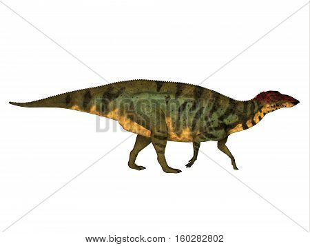 Shuangmiaosaurus Side Profile 3D Illustration - Shuangmiaosaurus was a herbivorous iguanodont dinosaur that lived in China in the Cretaceous Period.