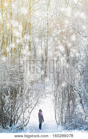 Woman walking in the winter forest vertical
