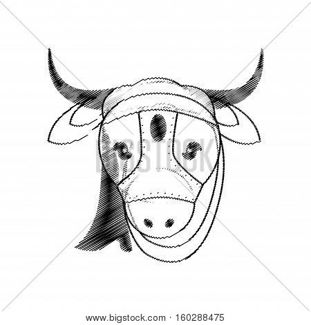 head indian sacred cow vector illustration eps 10