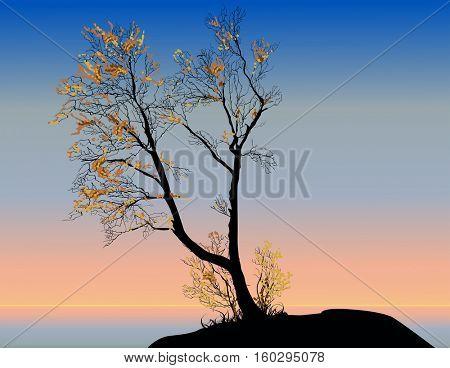 illustration with orange fall trees at sunrise sky