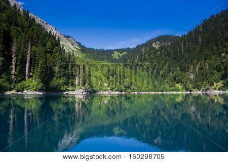 Natural landscape.  Panorama view of the lake Small Ritsa. Trees reflecting in the blue from lapis lazuli water. Ritsa National Park, Abkhazia, Georgia