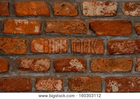 Old bricklaying. Red brick with separated salts.