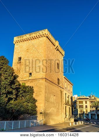 View of Castillo-Palacio de Altamira in Elche - Spain