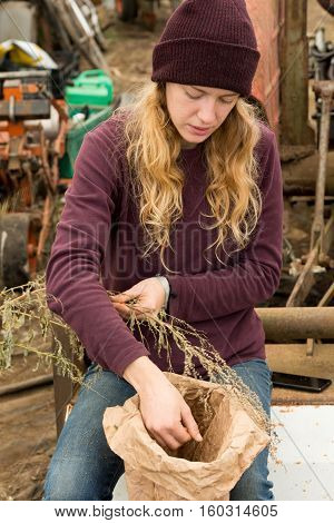 Young Woman Picks Organic Herbs And Produce Into A Bag