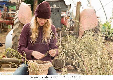 Smiling Young Lady Picks Organic Herbs And Produce Into Bag