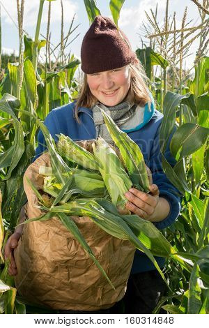 Smiling Woman In Corn Field Holding Bag Of Organic Cobs