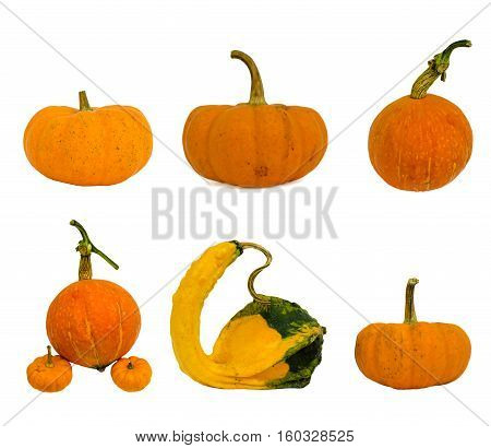 Fancy yellow Big pumpkin isolated on white background.
