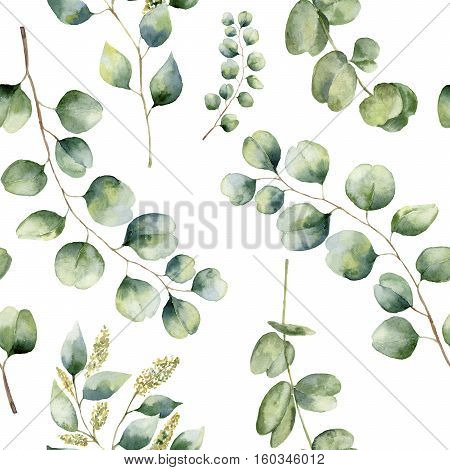 Watercolor floral pattern with eucalyptus leaves. Hand painted pattern with branches and leaves of silver dollar, baby and seeded eucalyptus isolated on white background. For design or background.