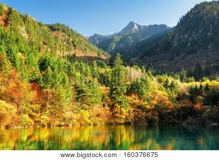 Amazing View Of Wooded Mountains And Colorful Autumn Forest
