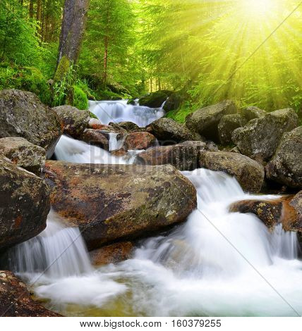 Waterfall on creek in mountain forest. Sunlight in the woods.