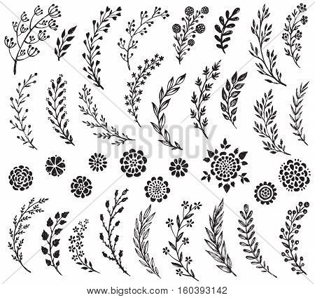 Big set of hand drawn vector flowers and branches with leaves and berries. Floral sketch collection. Decorative elements for design. Ink, vintage, rustic.