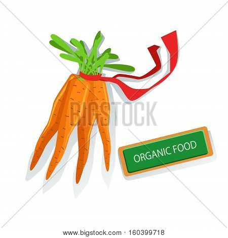 Bunch Of Carrots With Red Ribbon Fresh Organic Vegetables Illustration With Farm Grown Eco Products. Vegetarian Bio Food And Healthy Diet Element Cartoon Vector Drawing.