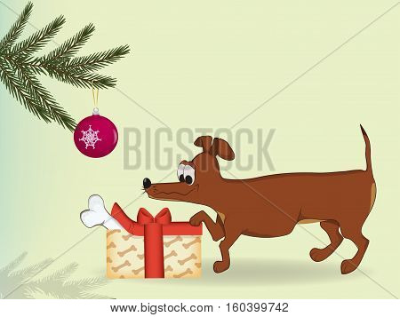 a pet among the Christmas gifts have found a big bone.