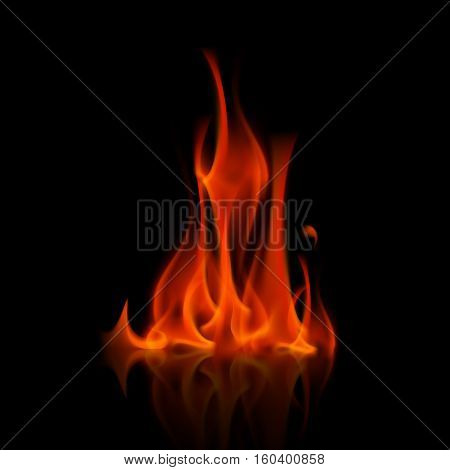 Vector Red Fire Flame Bonfire  Isolated on Background