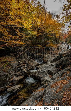 Waterfall at Sams Branch in Fall tumbles over boulders