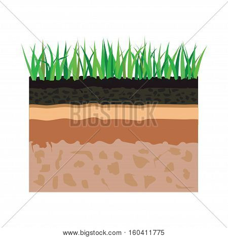 illustration of diagram for layer of soil nature landscape with soil tile and grass elements