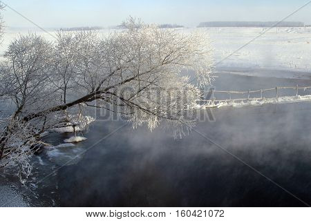 Winter Morning On The River Zai