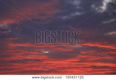 Colorful Purple Sunset
