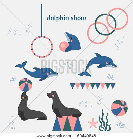 dolphin show dolphinarium, sea lion, seal, aqua circus and ocian animal