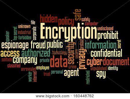 Encryption, Word Cloud Concept 4