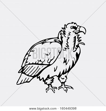 Hand-drawn pencil graphics, vulture, eagle, osprey, falcon, hawk, scavenger. Engraving, stencil style. Black and white logo, sign, emblem, symbol. Stamp, seal. Simple illustration. Sketch.