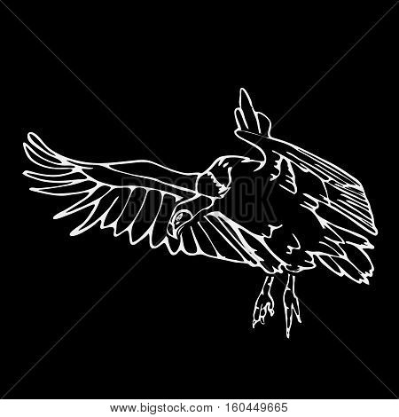 Hand-drawn pencil graphics, vulture, eagle, osprey, falcon, hawk, scavenger, griffon. Engraving, stencil style. Black and white logo, sign, emblem, symbol. Stamp, seal. Simple illustration. Sketch.