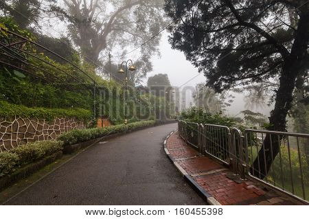 Foggy misty road indicating haunted for commercial