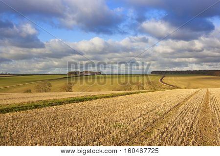 Yorkshire Wolds Farmling