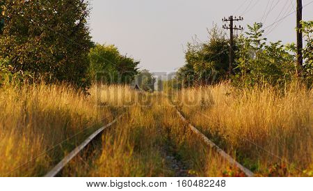 old forgotten railway somewhere in eastern europe overgrown with grass leading to nowhere during a summer evening