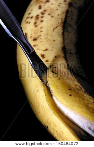 Cutting old banana with scalpel. Conceptual photo