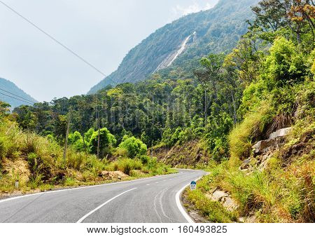 Beautiful Road On The Langbian Plateau To Da Lat City (dalat) In